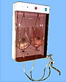 殺菌水製造装置